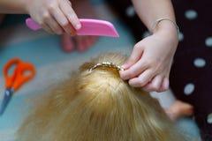 女孩的手梳玩偶的头发 免版税库存照片