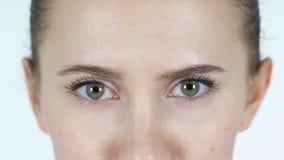 女孩的眨眼睛眼睛 股票视频