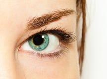 女孩的眼睛 免版税库存照片