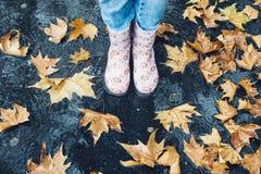 女孩的腿站立在与橙色下落的叶子的水坑的胶靴的在秋天 免版税库存照片