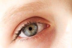 女孩眼睛 免版税库存照片