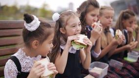 女孩穿同一个校服的大学生吃三明治和微笑,当休息在公园时 股票录像