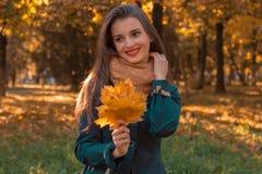 女孩立场在拿着枫叶的秋天公园看  免版税库存照片