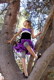 女孩结构树 免版税库存照片