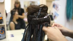 女孩美发师编织沙龙的dreadlocks客户 影视素材