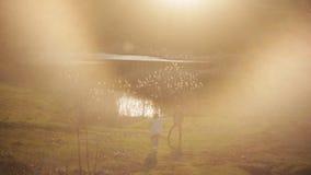 女孩自小山走向下来她的男朋友,站立在湖附近 一对爱恋的夫妇一起花费时间在期间 股票视频
