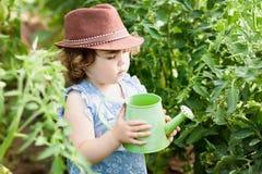 女孩自温室 图库摄影