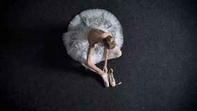 女孩芭蕾舞女演员剪影佩带pointe,坐地板,芭蕾概念,顶面射击 影视素材