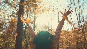 女孩获得乐趣在森林 股票录像