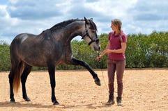 女孩训练马 免版税库存照片