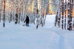 女孩走与一条狗在冬天积雪的城市公园 免版税库存照片