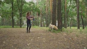 女孩走与狗在森林里 股票视频