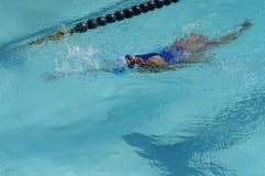 女孩运动员是训练的仰泳为准备以后的每年游泳体育比赛 库存照片