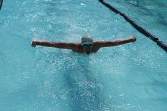 女孩运动员是训练的蝶泳为准备以后的每年游泳体育比赛 图库摄影