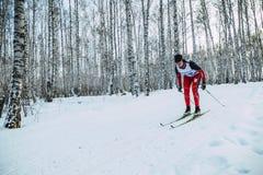 女孩运动员滑雪者在森林经典之作样式的轨道乘坐 免版税库存图片