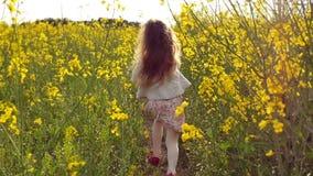 女孩连续十字架在日落的领域 慢的行动 股票视频