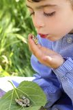 女孩递小的palying的桑蚕 图库摄影