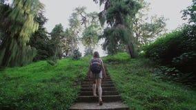 女孩通过具球果和热带树森林攀登沿石楼梯的小山 股票录像