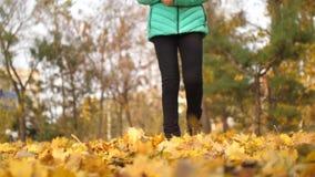 女孩通过秋天公园走,拿着和扔有她的脚的金黄槭树叶子 股票录像