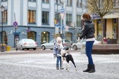 女孩遇见了一条狗 免版税库存图片