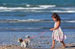 女孩遛她的鸦片狗 免版税图库摄影