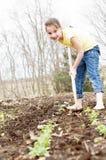 女孩锄的春天庭院 库存照片