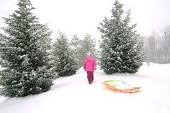 女孩雪撬 免版税库存图片