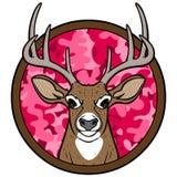 女孩鹿狩猎权威 免版税图库摄影