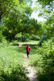 女孩,孩子,网,生活方式,夏天,森林,昆虫,喜悦,环境,自然 免版税库存图片