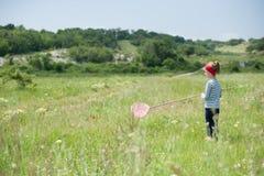 女孩,孩子,网,生活方式,夏天,森林,昆虫,喜悦,环境,自然 免版税库存照片