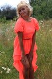 女孩,长的礼服,花的领域,一件桃红色礼服 花的领域的美丽的白肤金发的女孩 库存图片