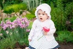 女孩8个月步行的欧洲乌克兰矮小的婴孩在庭院拿着一朵花和草莓在她的手上 库存照片