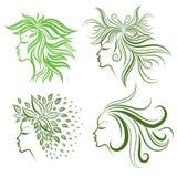 女孩头发叶子被设置的向量 免版税图库摄影