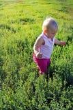 女孩婴孩在绿草去 库存照片
