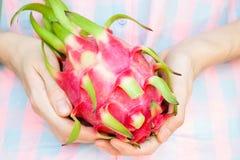 女孩` s手特写镜头用pitaya果子 异乎寻常的亚洲果子 库存照片