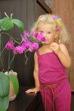 女孩orchidea气味 库存图片