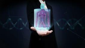 女实业家开放棕榈、迅速移动的前面女性身体和扫描的人血船系统 蓝色X-射线光 股票录像
