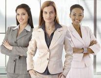 女实业家愉快的办公室纵向小组 免版税库存照片