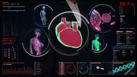 女实业家感人的数字式屏幕,女性身体扫描血管,淋巴,心脏,在数字显示的循环系统 皇族释放例证
