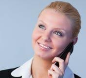 女实业家电话 免版税库存图片