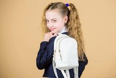 女小学生与小背包的马尾辫发型 在背包的运载的事 怎么学会适合的背包恰当地 女孩 免版税库存图片