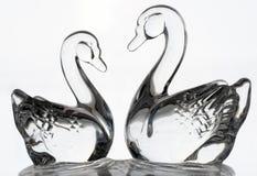 女性两只玻璃天鹅男性和 图库摄影