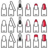 女性修指甲胶凝体和杂种钉子变化样式和形状包括杏仁、正方形、被环绕的钉子和修指甲在平原 免版税库存照片