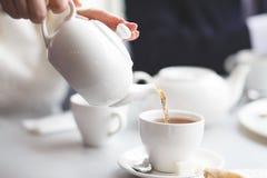 女性倾吐的茶 免版税库存图片