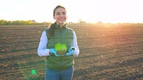 女性农夫在她的手上站立与幼木样品种植它在土壤 股票视频