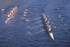 女性划船种族 图库摄影