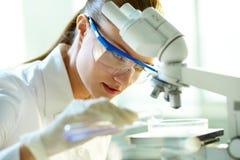 女性化学家 免版税库存照片