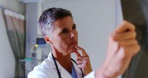 女性医生审查的X-射线报告4k 股票录像