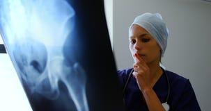 女性医生审查的X-射线报告4k 股票视频