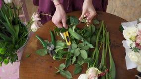 女性卖花人修剪花茎,顶视图 股票视频